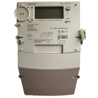 Электросчетчик GAMA 300 G3Y 147.230.F38.B2.P4.C100.H6 5(100)A